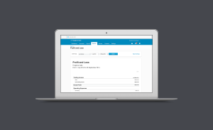 xero-online-accounting-interface